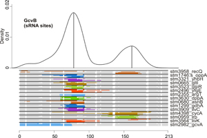 Learning from Relatives - New web tool simplifies prediction of regulatory networks in bacteria