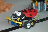 Kluge Köpfe bauen raffinierte Vehikel - Roboter-Wettbewerb der Technischen Fakultät